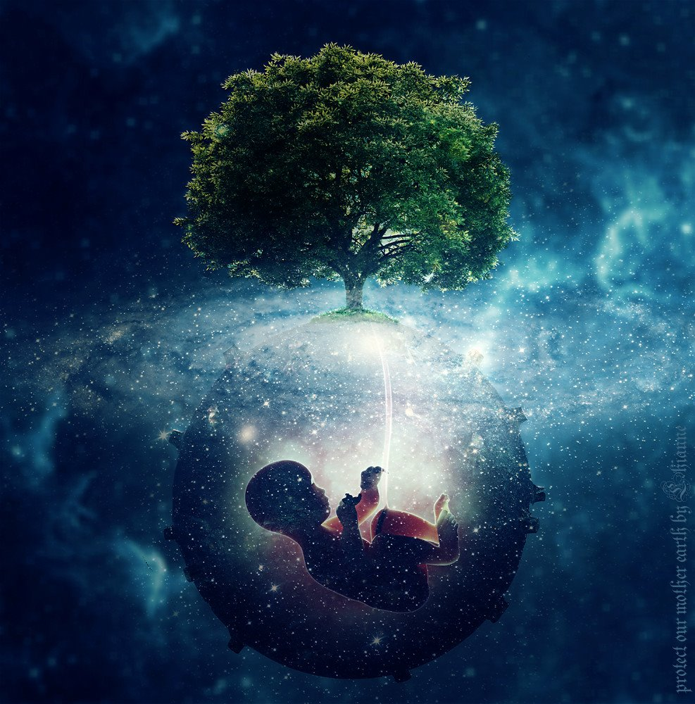 Fantasy artwork of a baby suspended in a womb in the stars and galaxy perched beneath a tree of life.